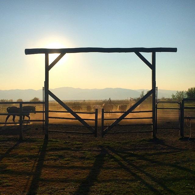 Linn Canyon Ranch